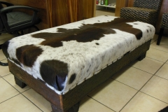 Dark brown Nguni and sleeperwood
